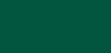 Cypress Insurance Group, Inc.