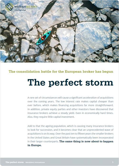 The Perfect Storm whitepaper cover